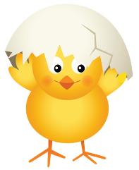 kyckling5
