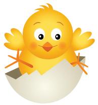 kyckling8