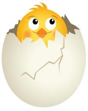 kyckling9